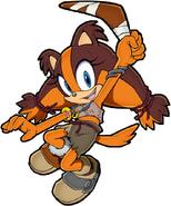 Sonic channel sticks