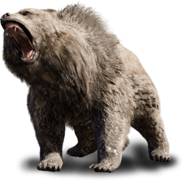 2 oso de cueva