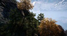 KyraRespite view.jpg