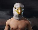 Fc5 mask eagle male