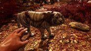 Far Cry® 4 20141208160935