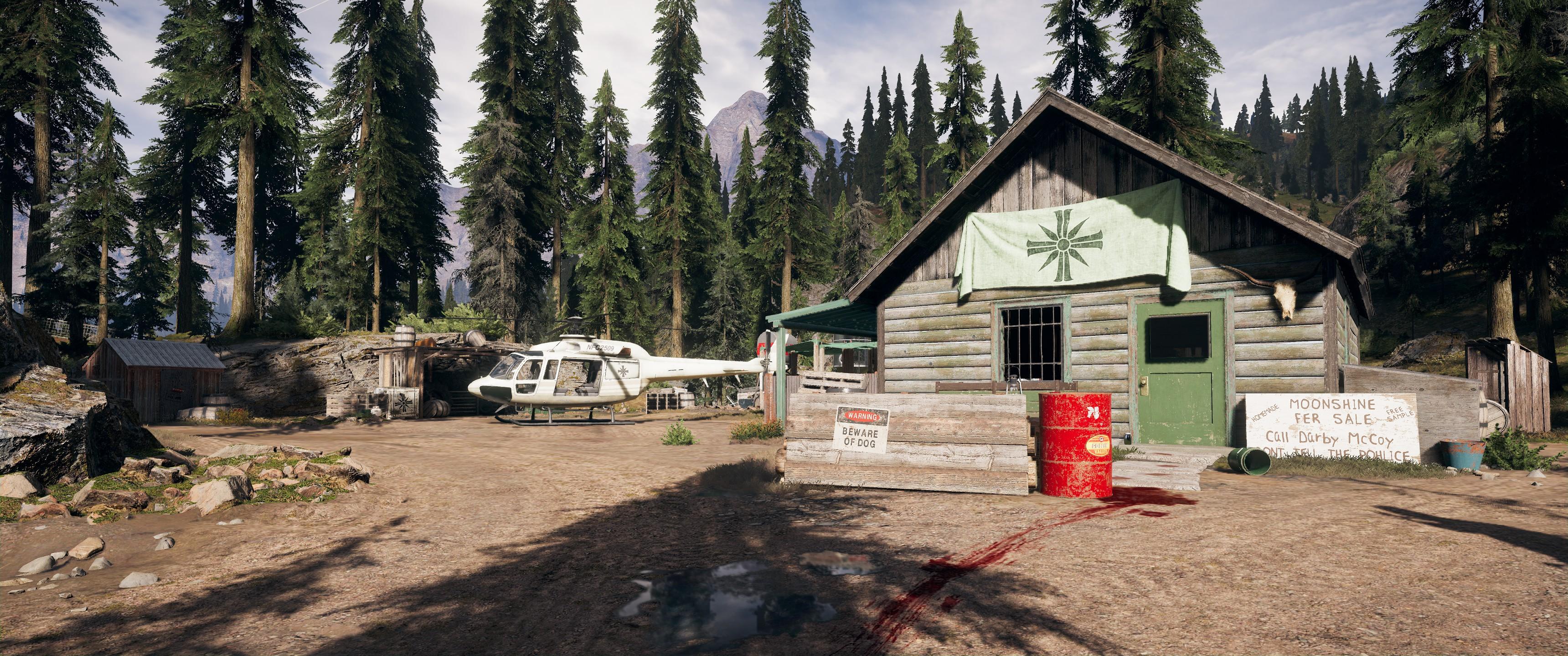 McCoy Cabin