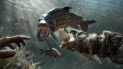 Demon Fish Attack
