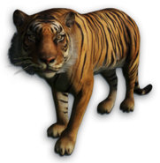 FC3 cutout tiger