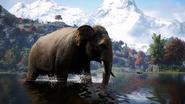 Far Cry® 4 20180121013212