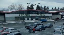 Phoenixfarms.png