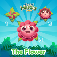 Flower Rule