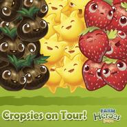 Cropsies on Tour Belgium