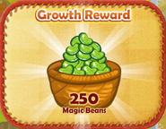 Magic-beans-2