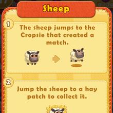 Sheep rule.png