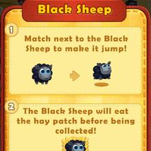 Sheep Black rule.png