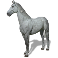 FS19 Animal-HorseGray