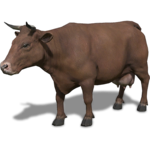FS19 Animal-CowBrown.png