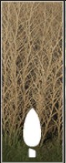 Poplars icon