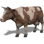 FS19 Animal-CowBrownWhite.png