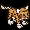 Amur Leopard-icon.png