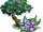 Star Flower Tree