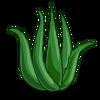 AloeVera-icon.png