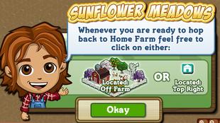 Sunflower Meadows Travel