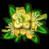 Yellow Myrtle Flower-icon