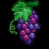 Grape-icon.png