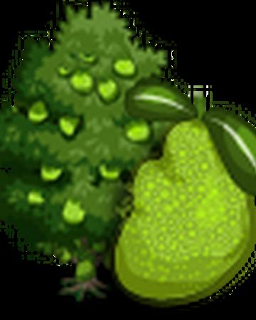 Singapore Jackfruit Tree Farmville Wiki Fandom This plant will be shipped bare root. singapore jackfruit tree farmville