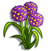 Floral Blush-icon.png