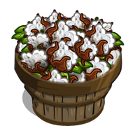 Australian Cotton Bushel-icon.png