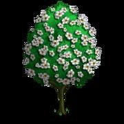 Bradford Pear Tree (Spring Wedding)-icon.png