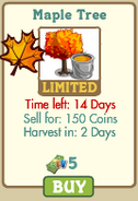 Maple-tree market