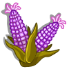 Purple Sweet Corn-icon