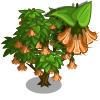 Angel Trumpet Tree-icon.png