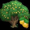 Marula Tree-icon.png