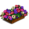 Anemone (decoration)-icon.png