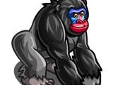 Mandrill Gorilla