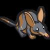 Bandicoot-icon