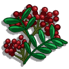 Sichuan Pepper-icon.png