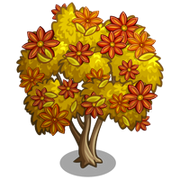 Star Anise Spice Tree-icon.png