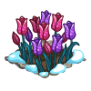 Tulips Flower Bed-icon.png