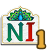 Namaste India Chapter 9 Quest 1-icon.png