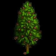 Mountain Pine Tree-icon.png