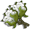 Chinese Cotton-icon.png