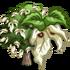 Giant Dove Tree-icon