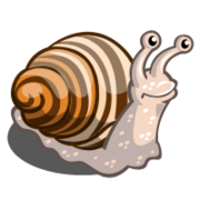 Wood Snail-icon.png