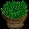 Green Tea Bushel-icon.png