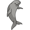 Finless Porpoise-icon.png