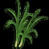 Lemongrass-icon.png