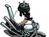 Motorcycle Sheep
