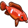 African Jewelfish-icon.png