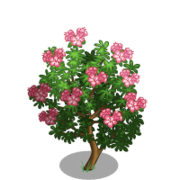 Alpenrose Tree-icon.png